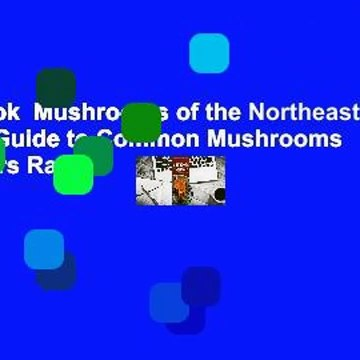 Full E-book  Mushrooms of the Northeast: A Simple Guide to Common Mushrooms  Best Sellers Rank :