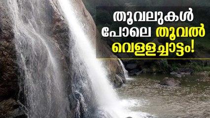 തൂവലുകള് പോലെ തൂവല് വെള്ളച്ചാട്ടം! Thooval Waterfalls Idukki // Kerala Tourism, Idukki Tourism