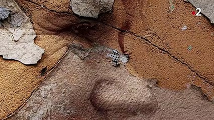 [EXTRAIT] Infrarouge - Amour à mort - Florence - 25/11/2020