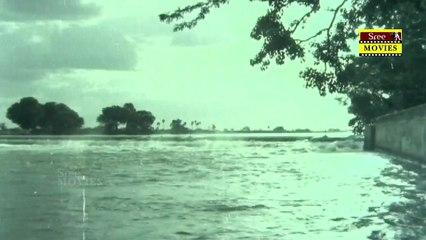Deviyin Thiruvilayadal  | Movie Scene 20 _|  Sridevi _|   Thyagarajan |  _ Rajesh