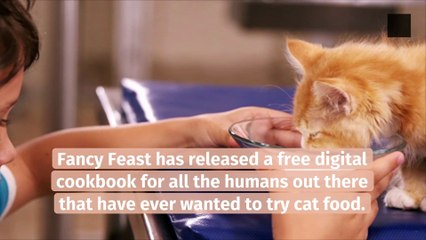 Fancy Feast Released a Cookbook Inspired by Cat Food
