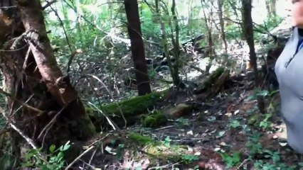 5 Scary Forest Creatures Caught on Camera-
