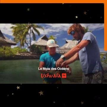 C_BouquetTV_V1(1)