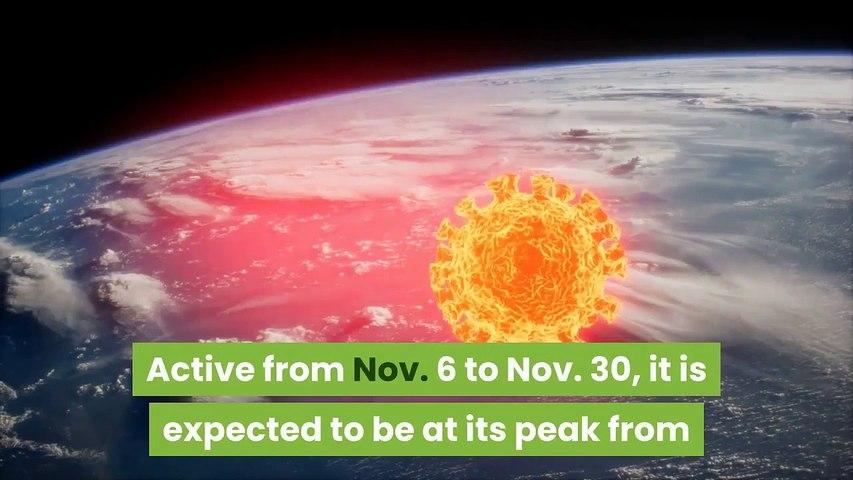 Leonids Meteor Shower 2020 Watch It Peak in Night Skies