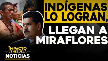 Indígenas lo logran: Llegan a Miraflores protestando   NOTICIAS VENEZUELA HOY noviembre 19 2020