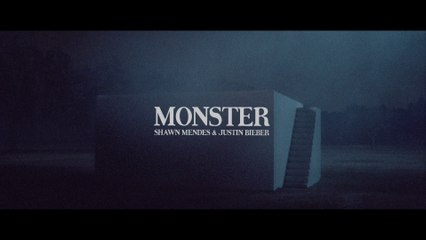 Shawn Mendes - Monster