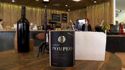 Vinho Pompeo