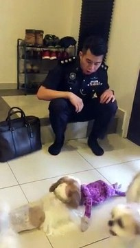 Perak police officer continues search for his missing dog