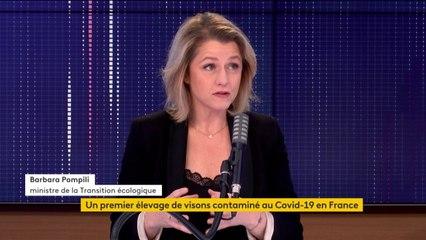 """Abattage de visons contaminés au Covid-19, création du délit d'écocide, exception au confinement pour les chasseurs... le """"8h30 franceinfo"""" de Barbara Pompili"""