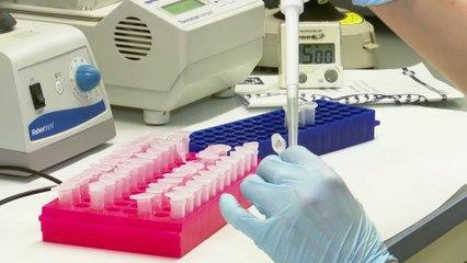 La vacuna de AstraZeneca y Oxford demuestra eficacia del 70% contra la Covid-19