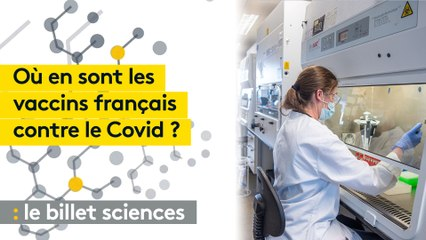 Sanofi, Pasteur: où en sont les vaccins des laboratoires français contre le Covid-19?