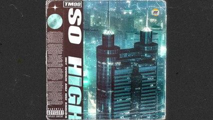 TM88 - So High