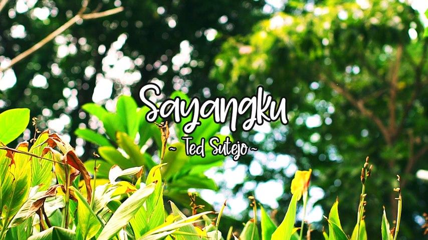 Ted Sutejo - Sayangku (Official Lyric Video)