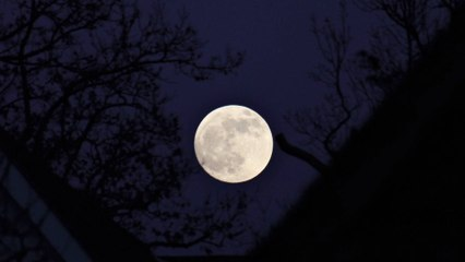 How The Moon Affects Us?