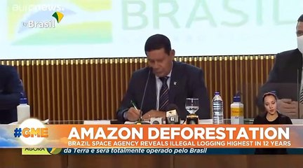 Amazon deforestation at highest level in 12 years, new data reveals