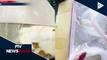 14 kilo ng ornamental fish, nasabat ng Bureau of Customs