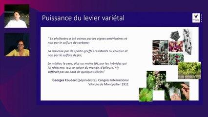 Resistant varieties, the future in Bordeaux
