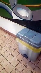 Brixworth Country Park toilet vandalism