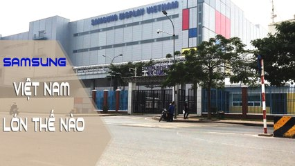 The truth about the magnificence of the Samsung Group's largest factory in Southeast Asia in Vietnam   Hẻm Radio