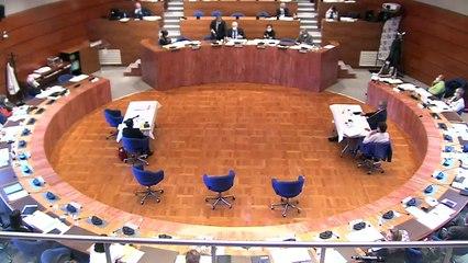 Séance publique - Budget primitif 2021 - 11/12/2020 - Après midi