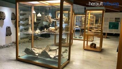 CAP D'AGDE - L'école de musique déconfine le musée de l'Éphèbe