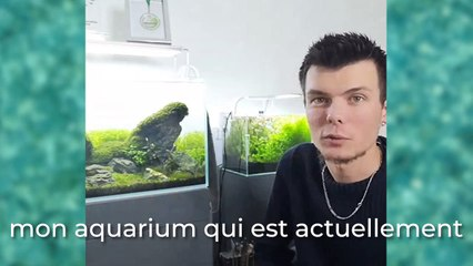 Aymeric Bernard : zoom sur son aquarium