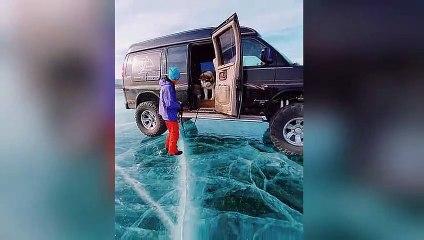 Un chien hésite à sauter sur la glace - Lac Baika - Sibérie
