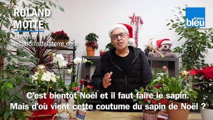 Roland Motte, jardinier : comment choisir son sapin de Noël
