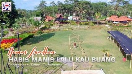 Hemas Aradhea - Habis Manis Lalu Kau Buang [OFFICIAL] DJ Semongko