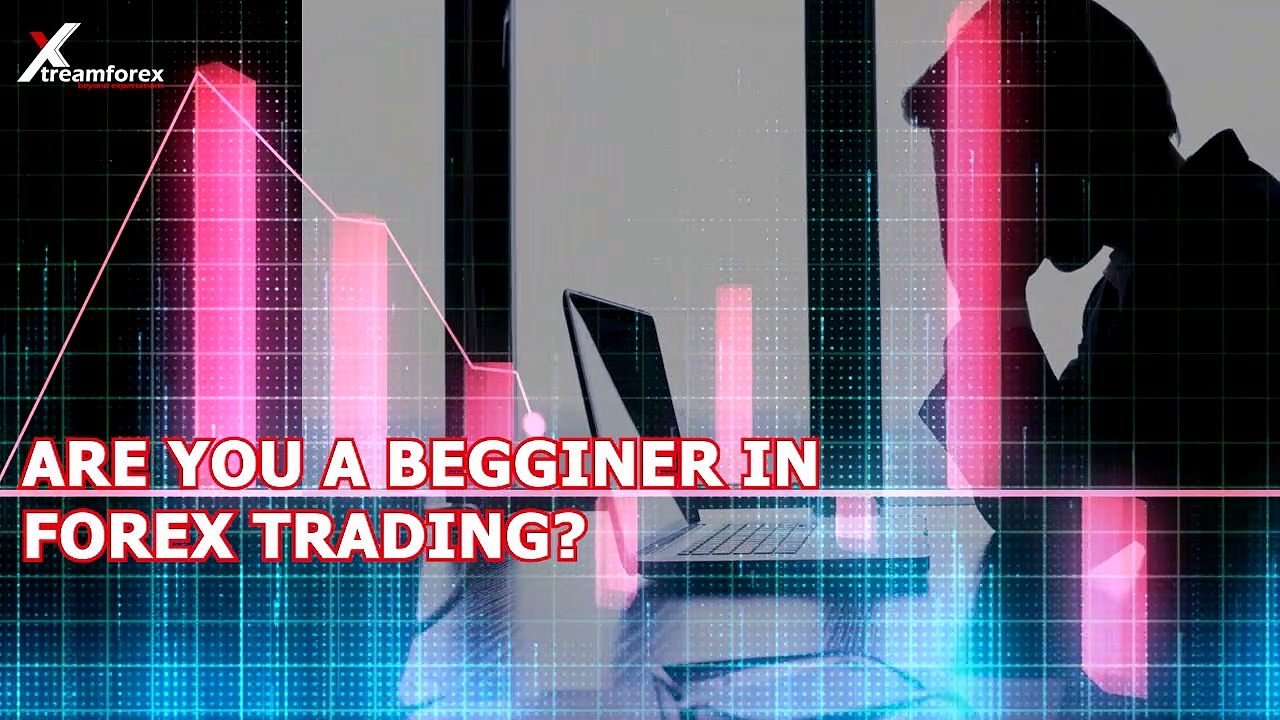 How Does Work Copy Trading Work