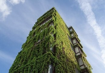 What Are The World 5 Greener Cities?