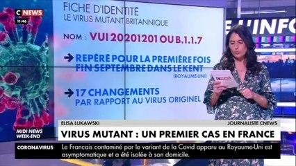 Coronavirus : un premier cas détecté en France du variant britannique (vidéo)