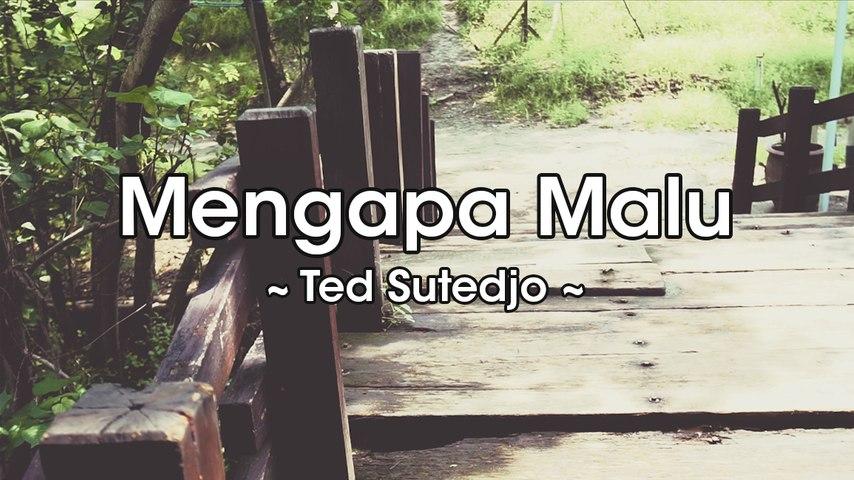 Ted Sutedjo - Mengapa Malu (Official Lyric Video)