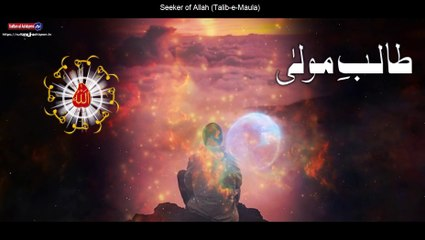 Best Motivational Sufi Quotes On Seeker of Allah | Sultan ul Ashiqeen Quotes