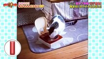 """バラエティ 無料視聴 - バラエティー無料視聴 動画 9tsu Miomio -  衝撃""""神""""映像  動画 9tsu  2021年1月5日"""