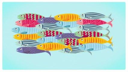 Patrick Sébastien - Les sardines