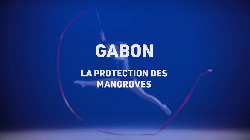 TLS le mag, La protection des mangroves au Gabon, Telesud, le 07/01/21