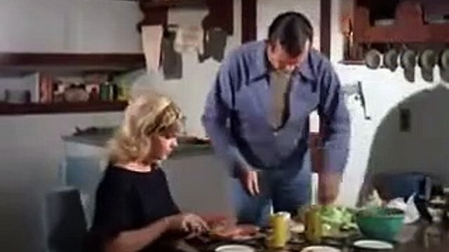 The Fugitive S04E17  The One That Got Away 1