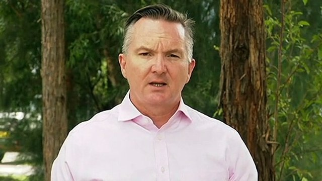 Labor criticises acting PM for defence of MP Craig Kelly