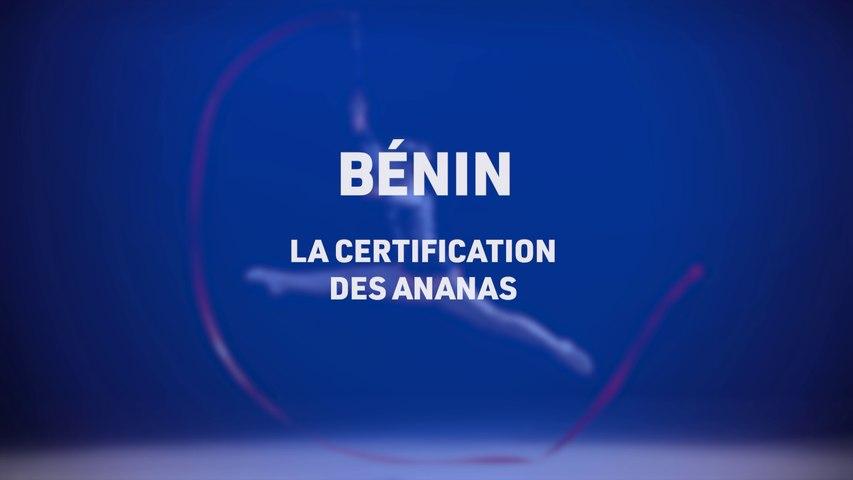 TLS le mag, la certification des ananas au Bénin, Telesud, le 12/01/21