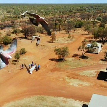 Property near Tennant Creek approved as backup quarantine centre