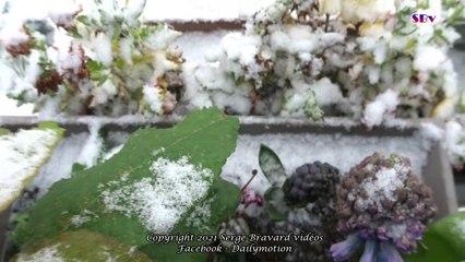 Il neige sur Paname...