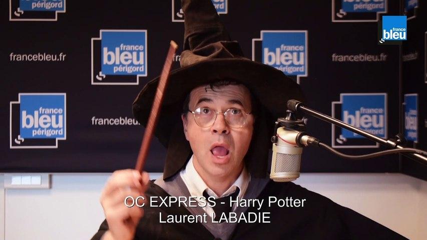 Lo choixpeau - le chapeau d'Harry Potter (Oc Express)