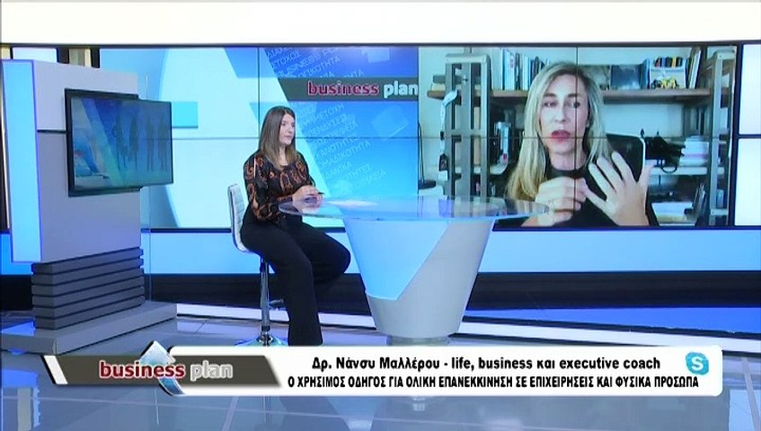 Business Plan 21-01-2021, Ν. Μαλλέρου, Θ. Μητσάκος