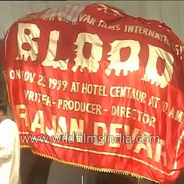 An elephant at the mahurat of Bollywood's shelved movie 'Blood'