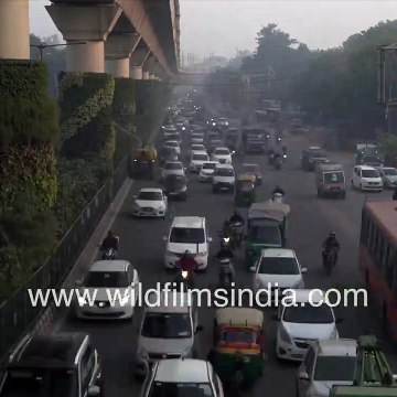 Doomsday in Delhi 2021_ - Vehicles 'vanish' in fog and smog during rush hour traffic