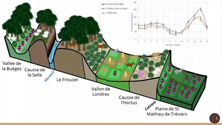 Quelles évolutions et place de l'élevage dans la zone du Grand Pic St-Loup (Hérault, France) ? Elevage et intérêt général