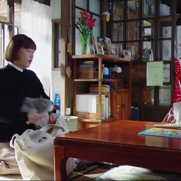 監察医 朝顔 11貫 動画 2021年1月25日