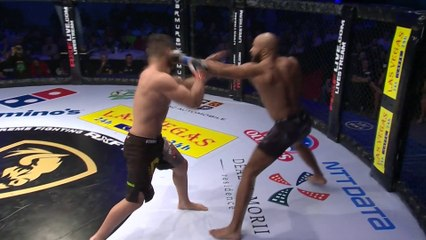 OLUTOBI AYODEJI KALEJAIYE (Netherlands) VS NICOLAE NEGUMEREANU (ROMANIA)   MMA FIGHT FULL HD, FRANCE