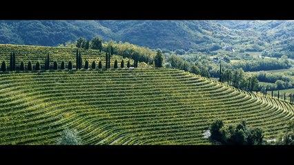 Quand la cheffe Antonia Klugmann partage sa passion pour le Frioul en Italie avec Lexus